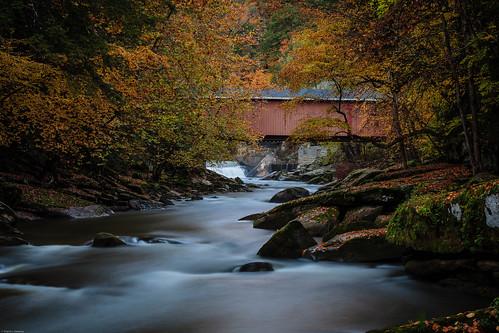 fall landscapeslipperyrockcreek mcconnelsmill statepark