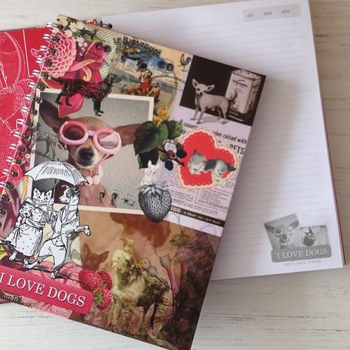 Tinta Negra notebooks (cuadernos)