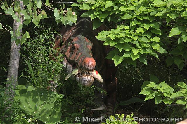 Dinosaur Island Columbus Zoo Aquarium 6 9 13