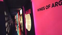 Argentina en Vinexpo, la vidriera más prestigiosa del mundo vitivinícola