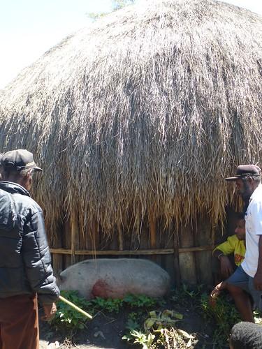 Papou13-Sinatma-Fete au village (17)