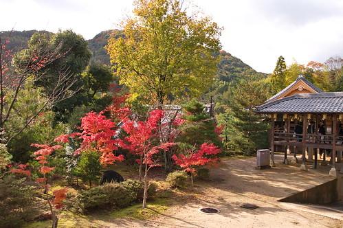 【写真】2012 紅葉 : 光明寺/2020-11-11/IMGP6499