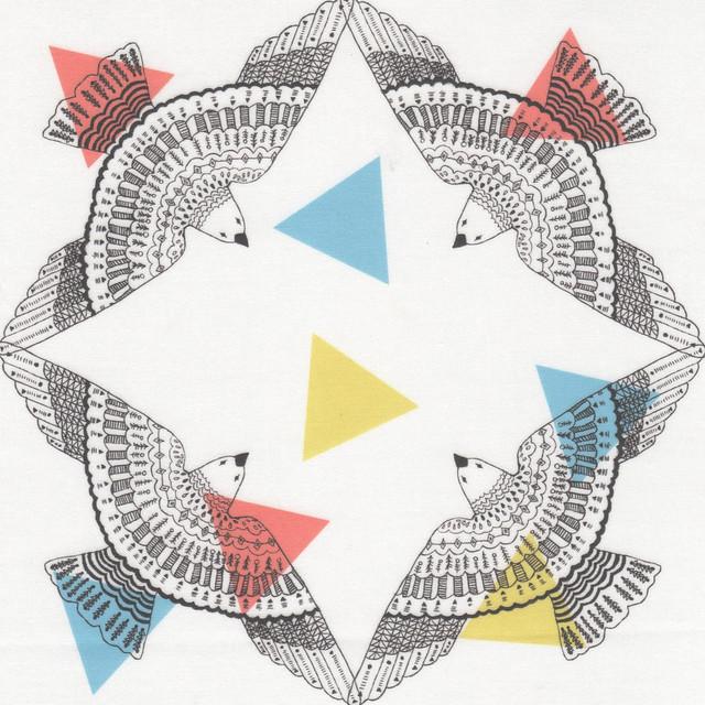 birds - triangle