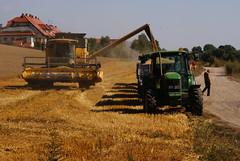 asphalt(0.0), construction equipment(0.0), bulldozer(0.0), agriculture(1.0), field(1.0), soil(1.0), vehicle(1.0), harvest(1.0), crop(1.0), harvester(1.0),