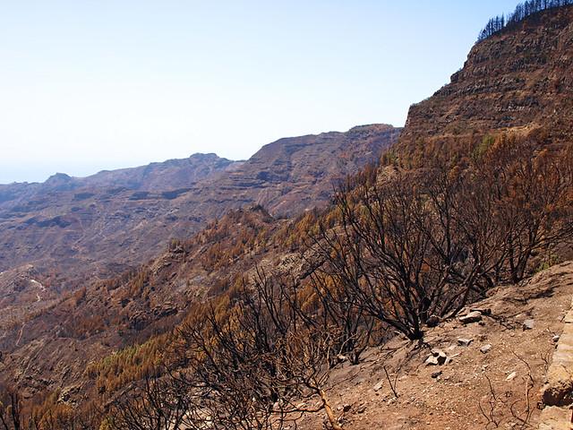 Forest Fires, La Gomera, 2012