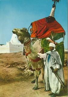 Sur de Argelia