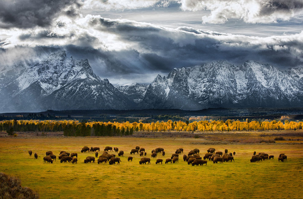 Teton National Park, USA – Source : Glen Hush / National Geographic pictures contest