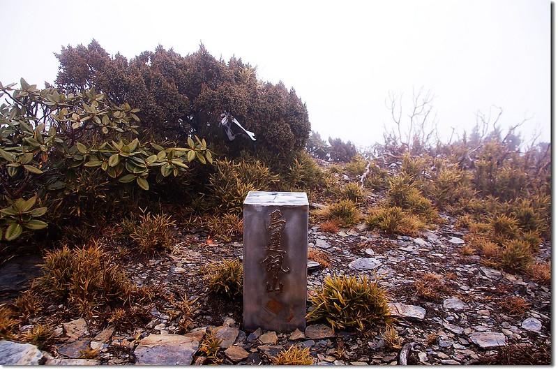 烏達佩山不鏽鋼基點(Elev. 3515 m)