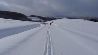 x-country ski