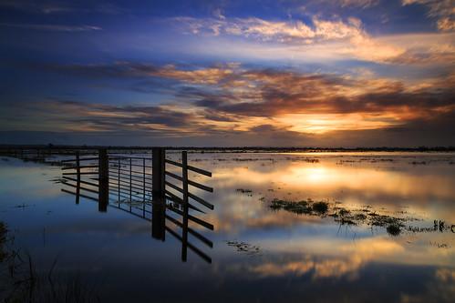 uk sunset reflection water flooding somerset somersetlevels tealhammoor floodedfields jacksdrove somersetfloods pixelsuzy floods2014