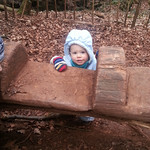George at Puzzlewood