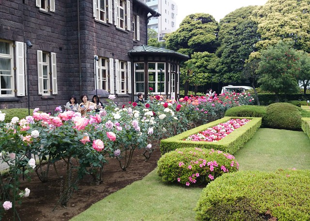 Kyu-Furukawa Garden Rose Bed