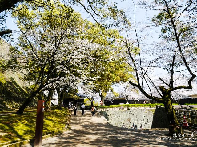 20140327山陽D2熊本-1120914
