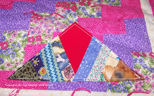 100_9129 - Triangle for my Spider Web Quilt - 5-3-2014