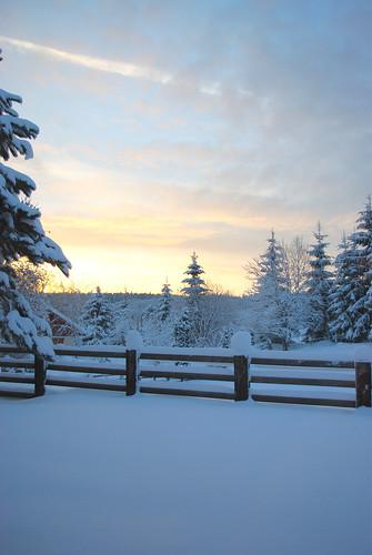 winter snow hiver neige hautdoubs