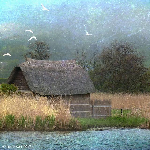 Lemon~art - A place to ponder - white doves