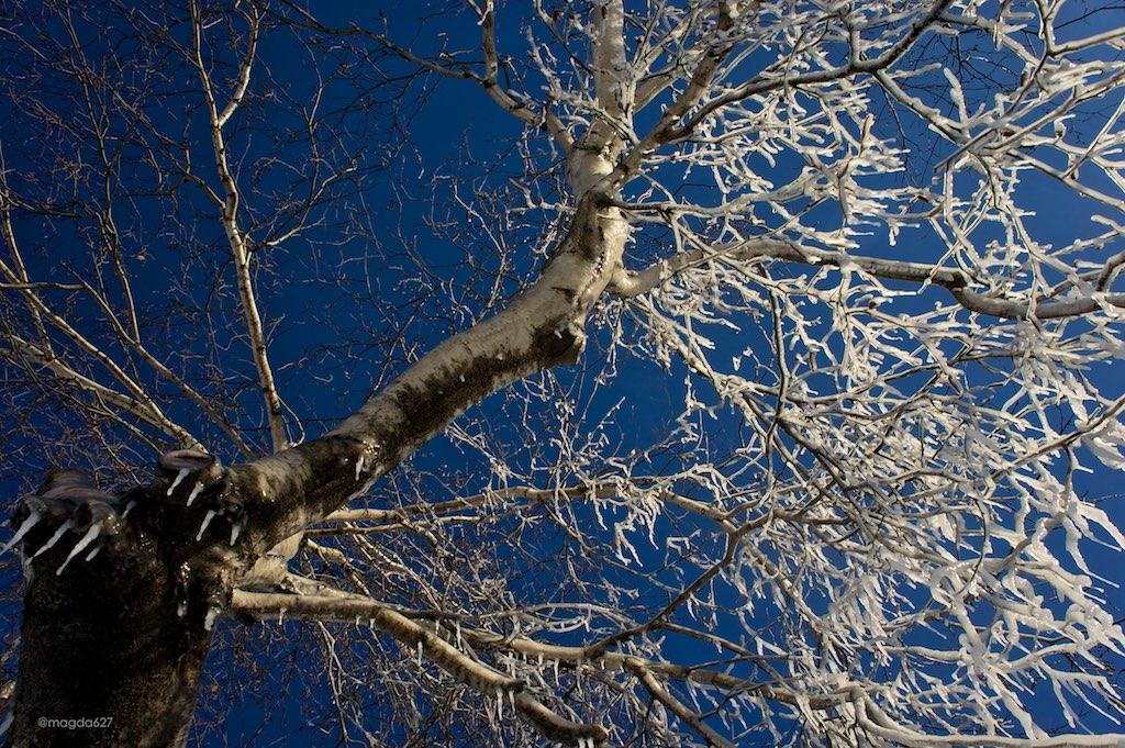 anteketborka.blogspot.com, ciel 16 h