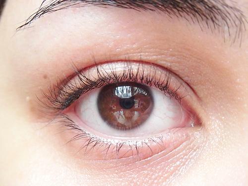 say_eyelashcurler_07
