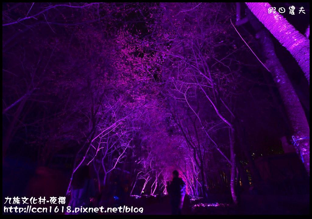 九族文化村-夜櫻DSC_5069