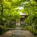 September (Jyoujyakkou-ji temple, Kyoto) by Marser
