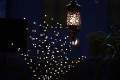 Light of the dark