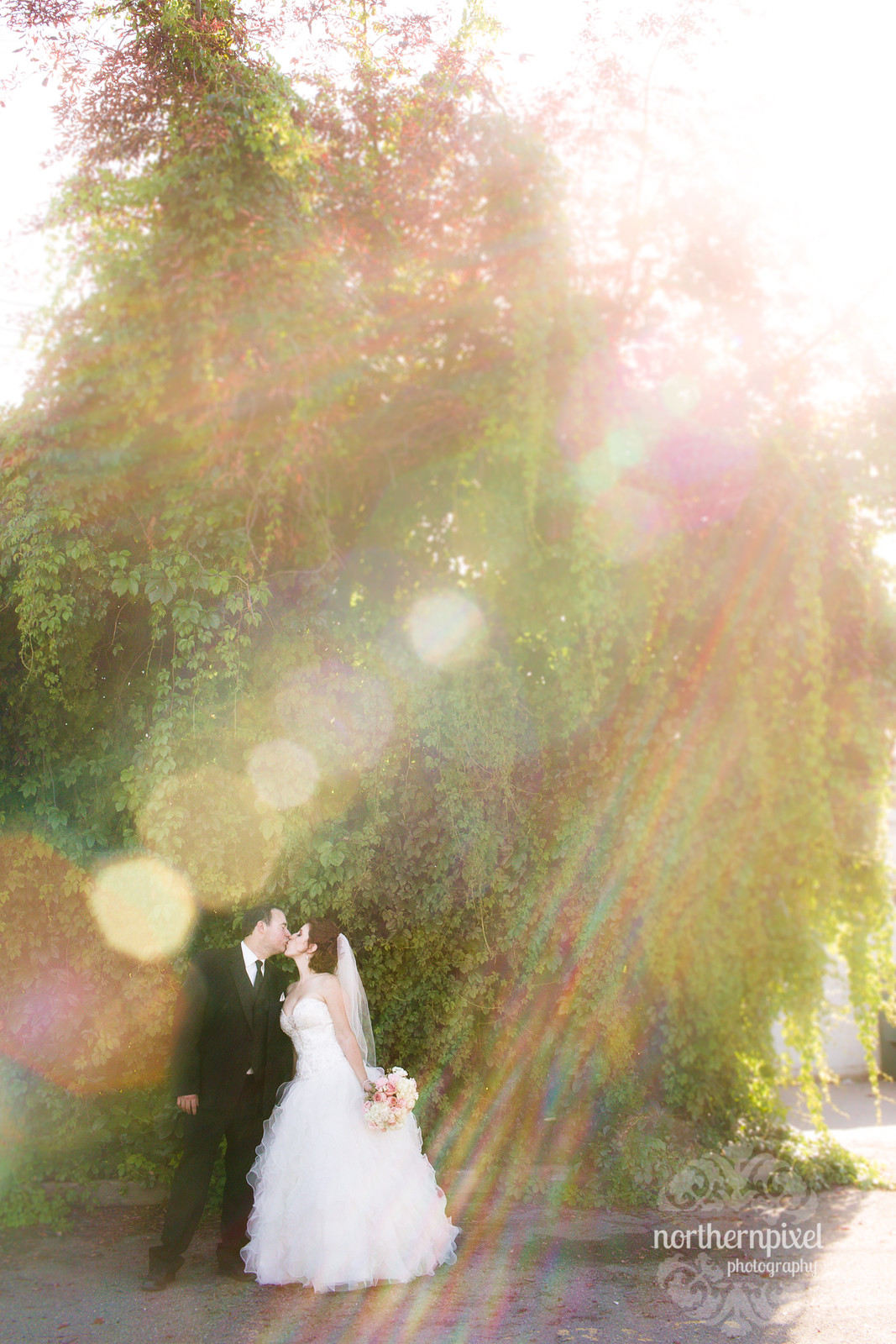 Wedding Day Sunflare - Prince George BC
