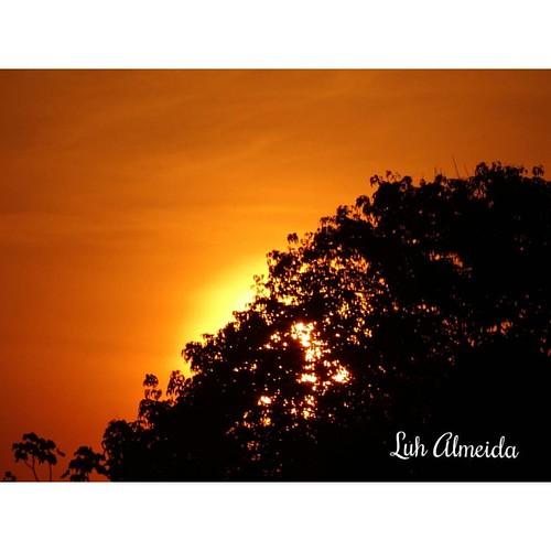 Detalhes de um por do sol!   #Deumdiadesses #FotoMinha #MeuAmazonas #Detalhes #Nature #Sol #BoaTarde