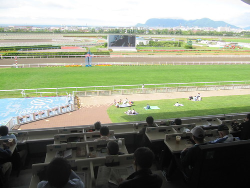 函館競馬場の指定席からの眺め