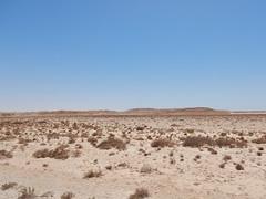 Western Sahara Landscapes