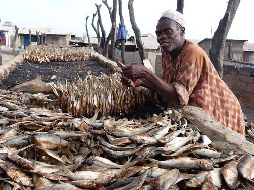 Hombre en Tanji (Gambia)