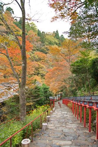 【写真】2012 紅葉 : 貴船神社/2019-02-06/IMGP5931