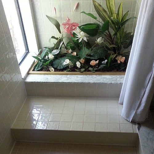 So...if you had this place in a shower with fake flowers and  rocks, how would you reform it?