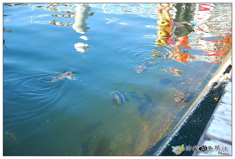 2013元貝休閒漁業_99