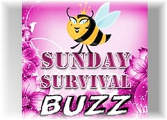 Sunday Survival Buzz G1
