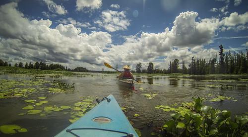 sc unitedstates southcarolina kayaking paddling lakemarion santeeriver lcu elloree lowcountryunfiltered lowfallslanding poplarcreeklanding