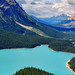 Afternoon at Peyto by Jeff Clow