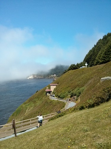 Day 8: Sea Lion Caves and Beachside State Park.