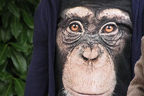 Dal pianeta delle scimmie by Alberto Guglielm8