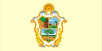Bandeira da cidade de Manaus