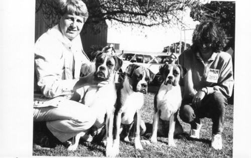 Gemma Pippi Hannah 1986