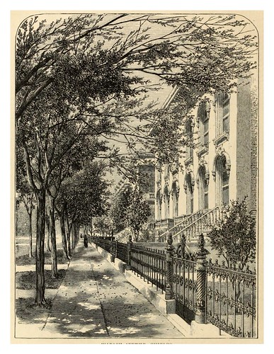 011-American pictures drawn with pen and pencil (1876)-Samuel Manning