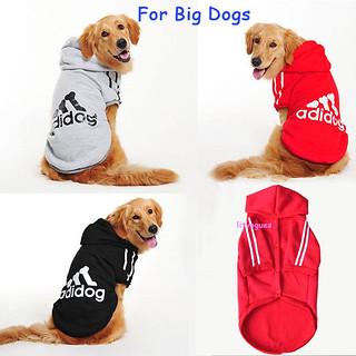 Big dog Cloth