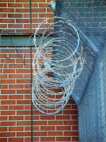 Razor Wire...chapter four The Firehydrant