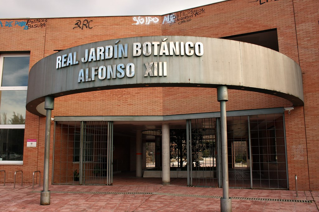 Real jard n bot nico alfonso xiii ciudad universitaria m for Precio entrada jardin botanico madrid