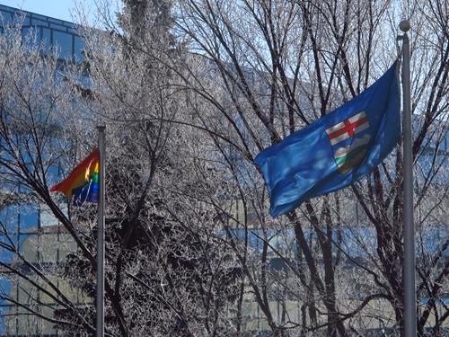 Alberta Pride by Wanderfull1