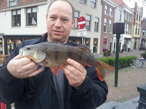 37 cm baars voor Haakon