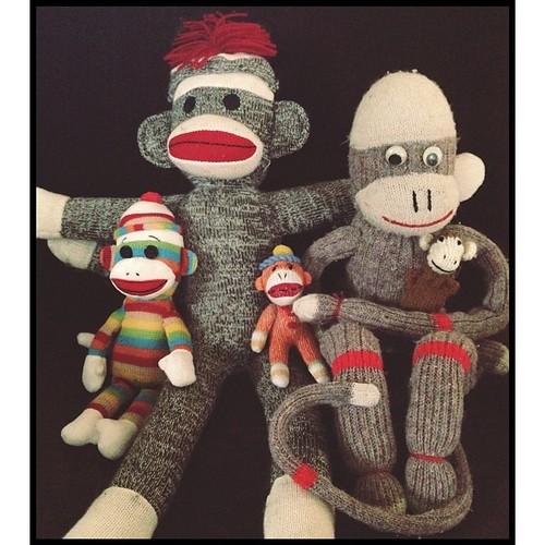 #fmsphotoaday May 3 - Collection. #sockmonkeylove