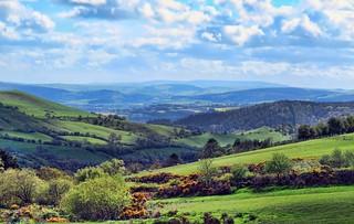 Those Blue Hills