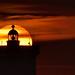 _4LN0656 : Kermorvan Lighthouse by Brestitude