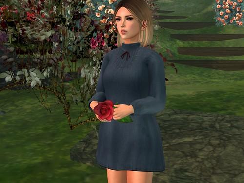 I have a rose